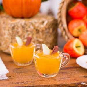 Spiced Apple Cider for Two with Cinnamon Sticks and Apple Slices
