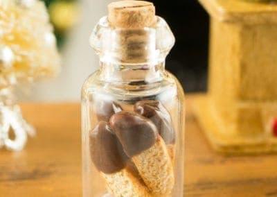 Chocolate Dipped Biscotti in a Jar