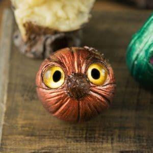 Copper Curious Pumpkin