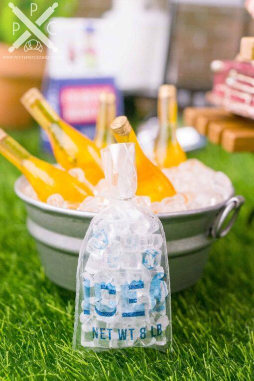 Dollhouse Miniature Ice Bag - 1:12 Dollhouse Miniature Summer Scene