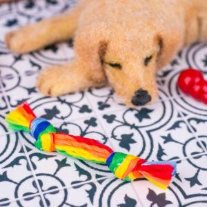 Rainbow Rope Dog Toy
