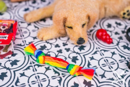 Dollhouse Miniature Rainbow Rope Dog Toy - 1:12 Dollhouse Miniature Dog Toy