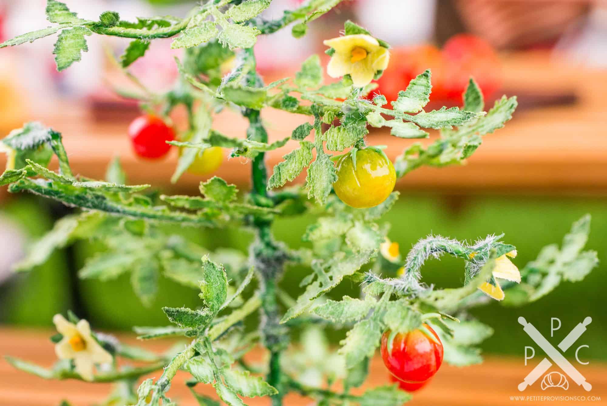 Dollhouse miniature vegetable garden with tomato plant